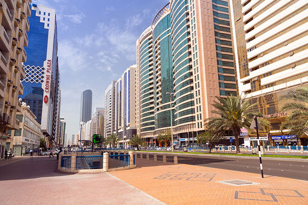 Abu Dhabi issues 9,412 new licences in 2017